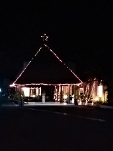 K in Motion Travel Blog. Friendliness and Festivities in Fiji. House Christmas Tree
