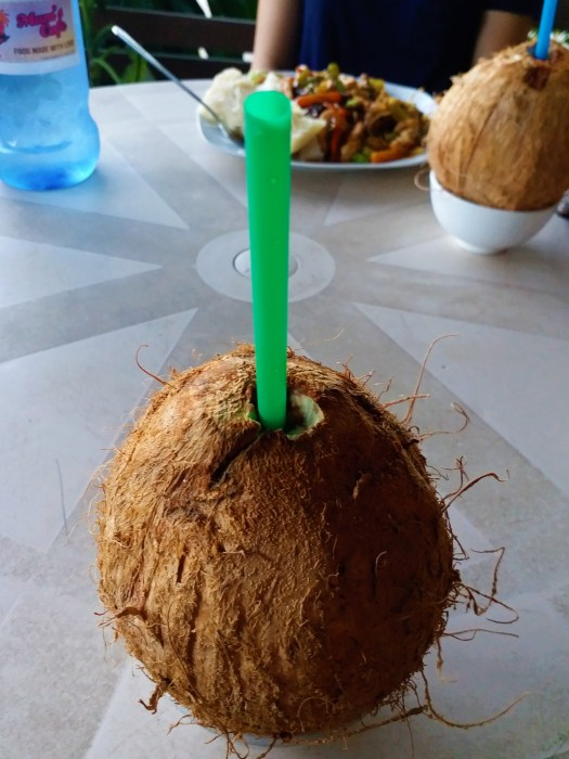 K in Motion Travel Blog. Tantalisingly Tropical Tonga. Drinking Coconut