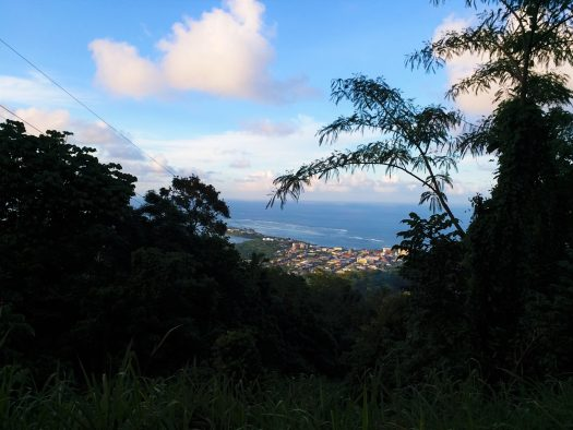 K in Motion Travel Blog. Surprising Samoa. View From Mount Vaea