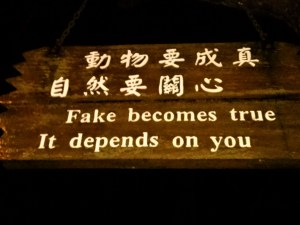 K in Motion Travel Blog. Amusingly Funny Signs Around the World. Sign on Lantau Island Hong Kong