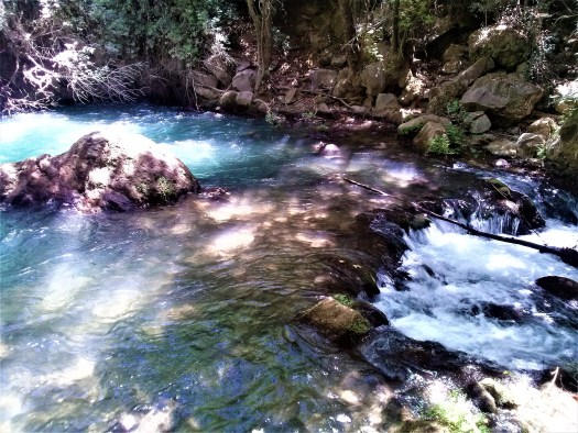 K in Motion Travel Blog. Historic and Natural Places to See in Northern Israel. Hermon Stream Trail