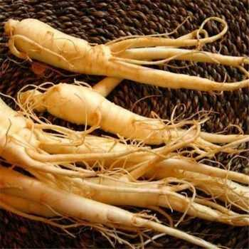 ingredientes ginseng