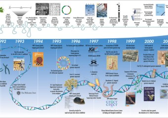 Genomics Marketing for the Financial Industry: a Scam or a Real Thing?