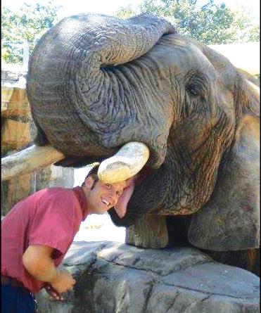 Bud the Elephant Passes Away