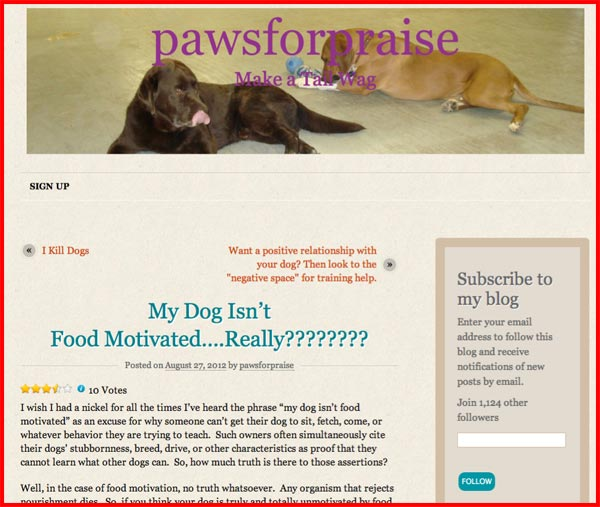 my-dog-isn't-food-motivated
