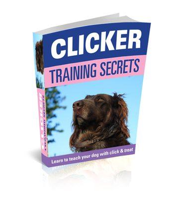 https://i2.wp.com/k9magazinecom.c.presscdn.com/wp-content/uploads/2012/04/Clicker-training-for-dogs-book2.jpg?w=1060