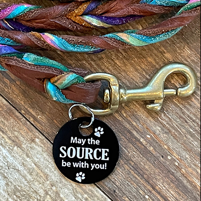 May the Source be with you Brag Tag on a Rainbow Leash