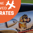 airline approved dog crates