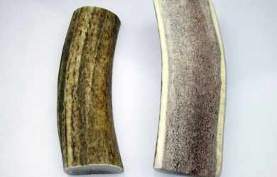 antler chews for dogs