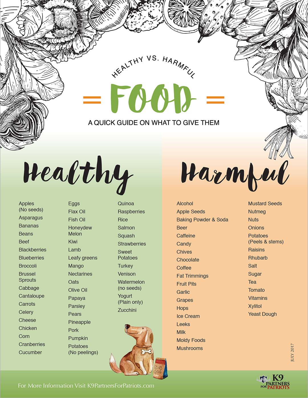 Healthy Vs Harmful Food Amp Treats For Your Dog