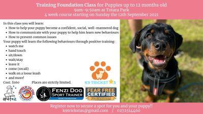 Training Foundation