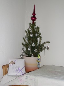 Christbaum_2013