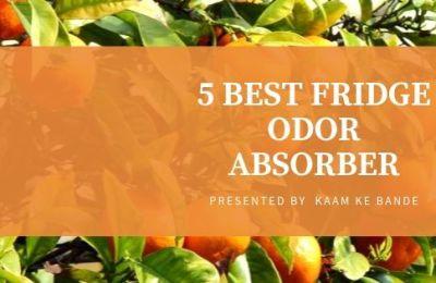 Fridge Odor Absorber