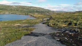 På vei nordover fra Rjotemyrane mot Hedlo.