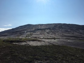 Utsikt opp mot Reinnesfjellet.