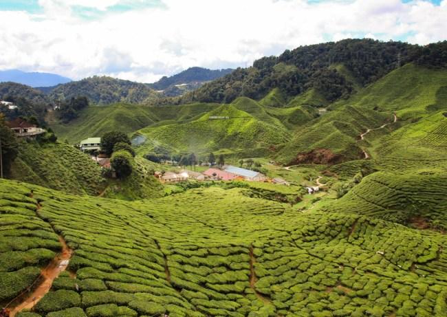 Westkust Maleisië
