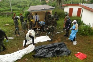 Womey : Faya Milimono contre la militarisation du village