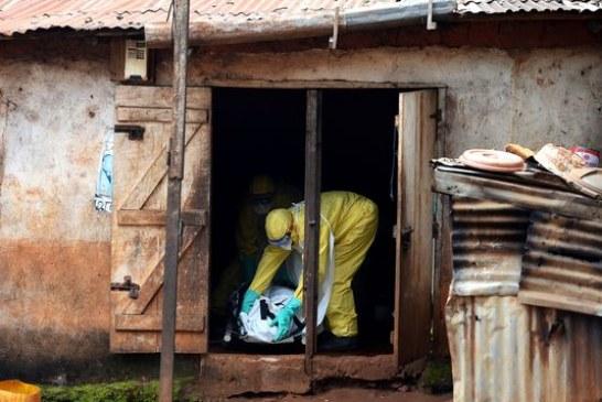 Adrien Absolu: en Guinée, «il y a eu beaucoup de fantasmagories autour d'Ebola»