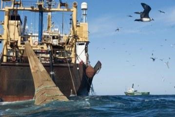 Pêche/Levée de sanction contre la Guinée: le Chef de mission de l'UE ne rassure pas