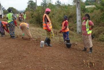 Boké: 150 balayeurs pour assainir le quartier Baralandé
