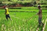 Campagne agricole 2017 : la répartition des engrais en débat !