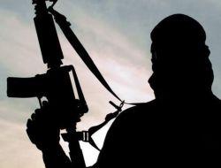 Demi Lawan Teroris, Suriah Minta Bantuan Global