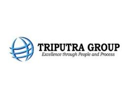 Lowongan Internship Triputra Group