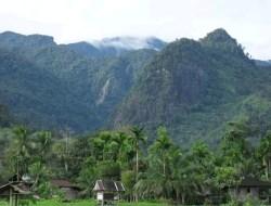 Gubernur Sumbar : Pemeliharaan Hutan Menjadi Kontribusi Pemprov untuk Menjaga Lingkungan