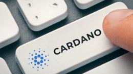 apa yang menyebabkan tren bearish di Cardano