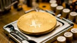 Alternatif Bitcoin Terbaik