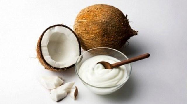 Image result for Santan kelapa