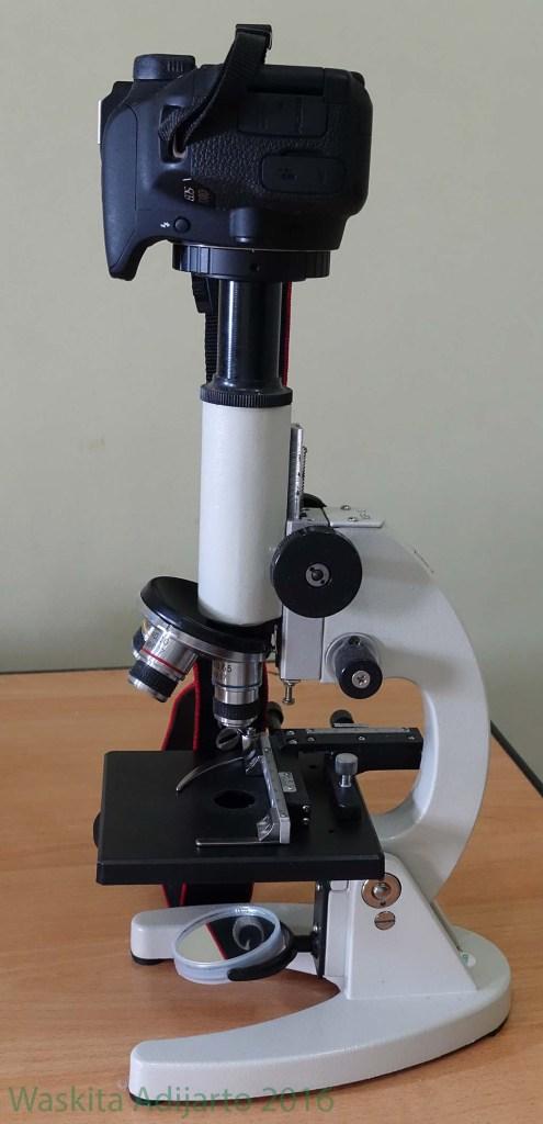 Mikroskop dengan kamera