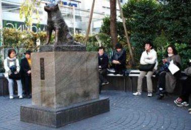 monumen Hachiko di Sekitaran Stasiun Shibuya