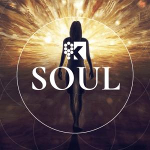 course image - logo soul