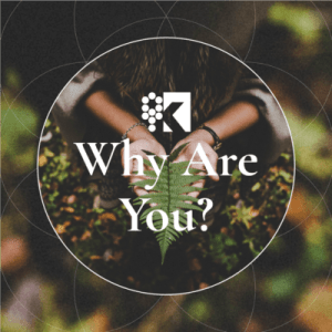 Class Image - logo why are you