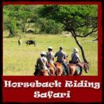 horseback-riding-safari