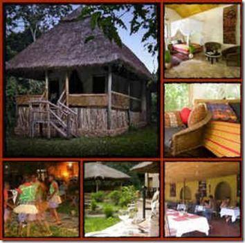 Primate Lodge - Kibale Forest National Park