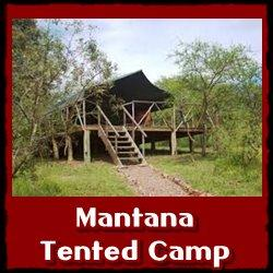 Top Lodging Choices in Lake Mburo Park