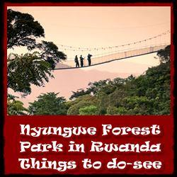 Nyungw-National-Park-things-to-do