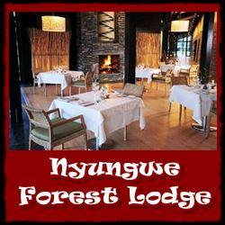 Top Lodging Choices - Nyungwe Forest National Park