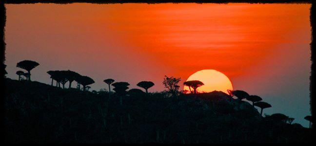 Akagera-national-park-remarkable-rwanda