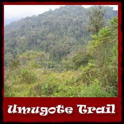 umugote-trail