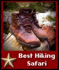 5 day Murchison Falls Wildlife-Rhino-Chimpanzee Hiking Safari