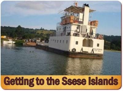 Top Things to do and see on the Ssese Islands