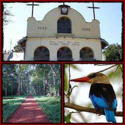 budongo royal mile