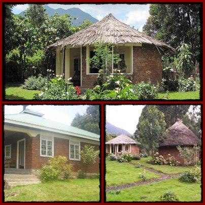 Amajambere Iwacu Community Camp - Mgahinga Gorilla Park