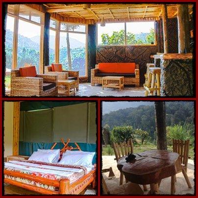 Rushaga Gorilla Camp - Bwindi Impenetrable Forest