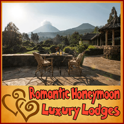 Extra Touch Romantic Surprises on your Gorilla Honeymoon Safari in Uganda