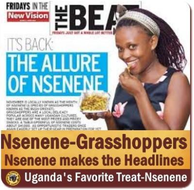 Nsenene - Grasshoppers are a Ugandan Delicacy
