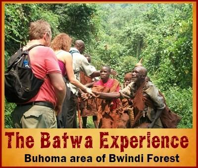 7 Day Twice Gorilla Trekking - Hiking Safari through Bwindi Forest